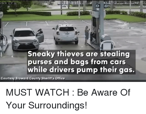 Cars, Conservative, and Sheriff: Sneaky thieves are stealing  purses and bags from cars  while drivers pump their gas.  Courtesy Broward County Sheriff's Office MUST WATCH : Be Aware Of Your Surroundings!