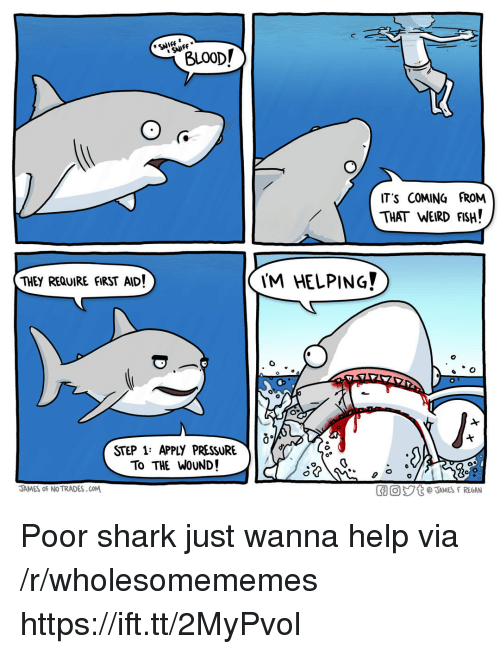 Pressure, Weird, and Shark: SNIFF  BLO0D/  IT'S COMING FROM  THAT WEIRD FISH!  THEY REQUIRE fIRST AID!  'M HELPING?  0  STEP 1: APPLY PRESSURE  To THE WoUND!  JAMES oF NO TRADES.COM  GO。ジt @JAMES F REGAN Poor shark just wanna help via /r/wholesomememes https://ift.tt/2MyPvol