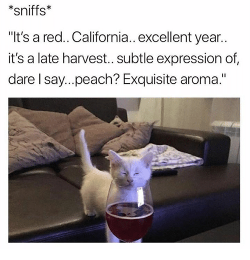 """California, Red, and Peach: *sniffs  """"It's a red.. California.. excellent year..  it's a late harvest..subtle expression of  dare l say...peach? Exquisite aroma."""""""
