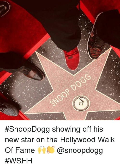 Wshh, Star, and Hood: #SnoopDogg showing off his new star on the Hollywood Walk Of Fame 🙌👏 @snoopdogg #WSHH