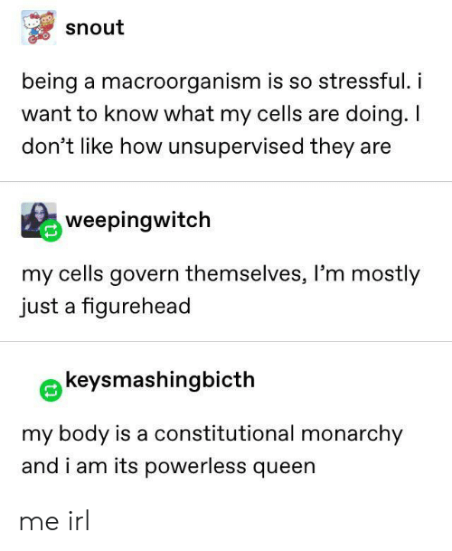Queen, Monarchy, and Irl: snout  being a macroorganism is so stressful.i  want to know what my cells are doing. I  don't like how unsupervised they are  weepingwitch  my cells govern themselves, l'm mostly  just a figurehead  keysmashingbicth  my body is a constitutional monarchy  and i am its powerless queen me irl