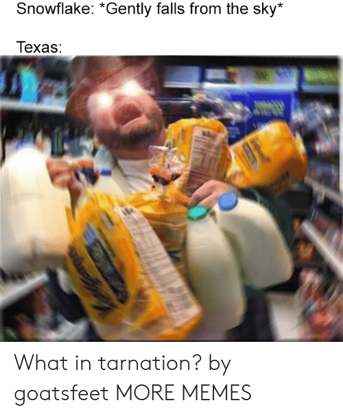 Dank, Memes, and Target: Snowflake: *Gently falls from the sky*  Texas: What in tarnation? by goatsfeet MORE MEMES