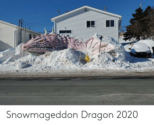 dragon: Snowmageddon Dragon 2020