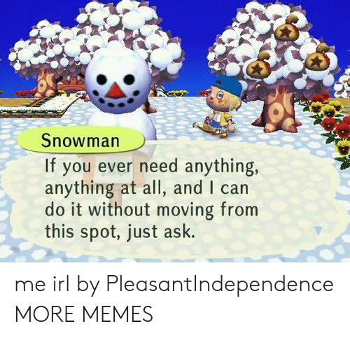 Dank, Memes, and Target: Snowman  If you ever need anything,  anything at all, and I can  do it without moving from  this spot, just ask. me irl by PleasantIndependence MORE MEMES