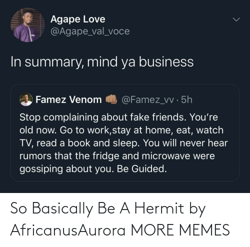 Basically: So Basically Be A Hermit by AfricanusAurora MORE MEMES