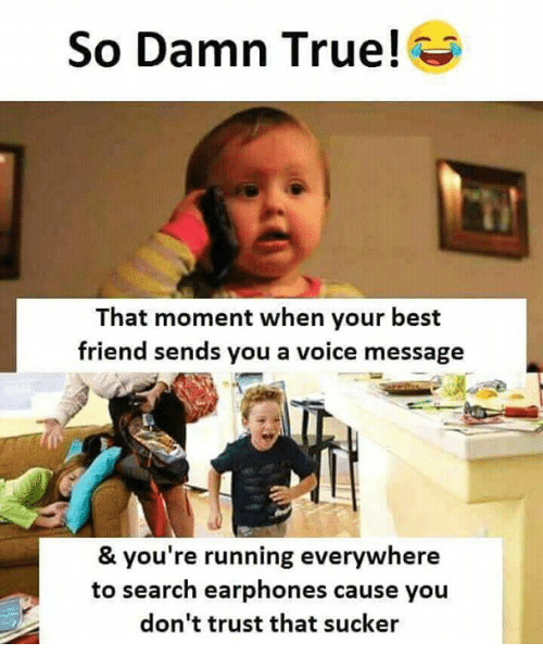 Best Friend, Memes, and True: So Damn True!  That moment when your best  friend sends you a voice message  & you're running everywhere  to search earphones cause you  don't trust that sucker