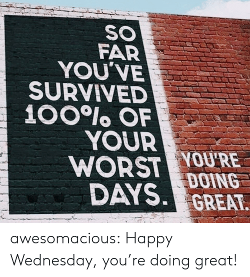 Tumblr, Blog, and Happy: SO  FAR  YOU'VE  SURVIVED  100lo OF  YOUR  WORST YOU'RE  DAYS DOING  GREAT awesomacious:  Happy Wednesday, you're doing great!
