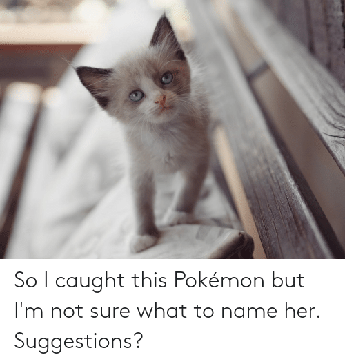 To Name: So I caught this Pokémon but I'm not sure what to name her. Suggestions?