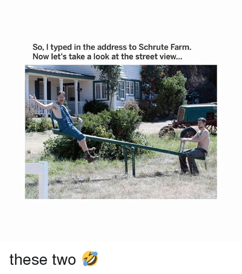 Memes, Street View, and 🤖: So, I typed in the address to Schrute Farm.  Now let's take a look at the street view... these two 🤣