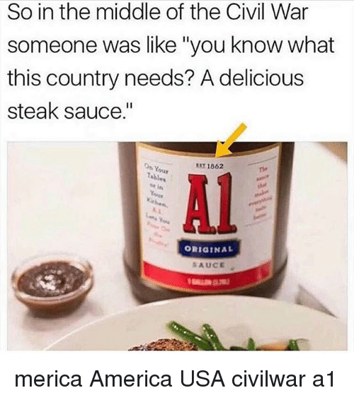 "America, Memes, and Civil War: So in the middle of the Civil War  someone was like ""you know what  this country needs? A delicious  steak sauce.""  On Your  EST 1862  ne  Al  ORIGINAL  SAUCE merica America USA civilwar a1"