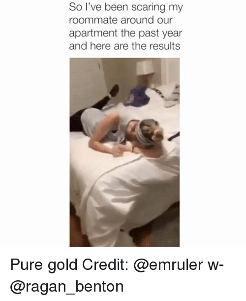 Memes, Roommate, and Been: So l've been scaring my  roommate around our  apartment the past year  and here are the results Pure gold Credit: @emruler w- @ragan_benton