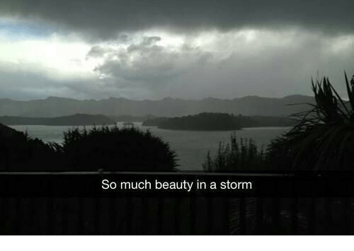Storm, Beauty, and  Much: So much beauty in a storm