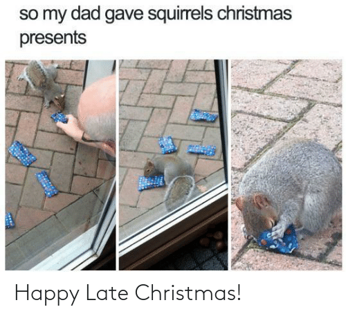 presents: so my dad gave squirrels christmas  presents Happy Late Christmas!