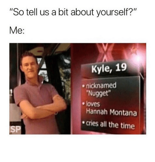 """Hannah Montana, Montana, and Time: """"So tell us a bit about yourself?""""  Me:  Kyle, 19  Nugget  Hannah Montana  cries all the time  ^  nicknamed  e loves  SP"""