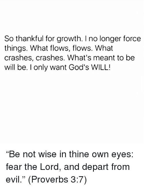 """Memes, Evil, and Fear: So thankful for growth. I no longer force  things. What flows, flows. What  crashes, crashes. What's meant to be  will be. I only want God's WILL! """"Be not wise in thine own eyes: fear the Lord, and depart from evil."""" (Proverbs 3:7)"""
