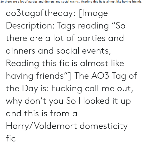 """voldemort: So there are a lot of parties and dinners and social events, Reading this fic is almost like having friends, ao3tagoftheday:  [Image Description: Tags reading """"So there are a lot of parties and dinners and social events, Reading this fic is almost like having friends""""]  The AO3 Tag of the Day is: Fucking call me out, why don't you   So I looked it up and this is from a Harry/Voldemort domesticity fic"""
