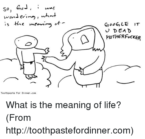 Google, Life, and Memes: So, was  want er, no, what  of  is the meem, no  Toothpaste For Dinner .com  GOOGLE IT  DEAD  v MOTHERFUCKER What is the meaning of life? (From http://toothpastefordinner.com)