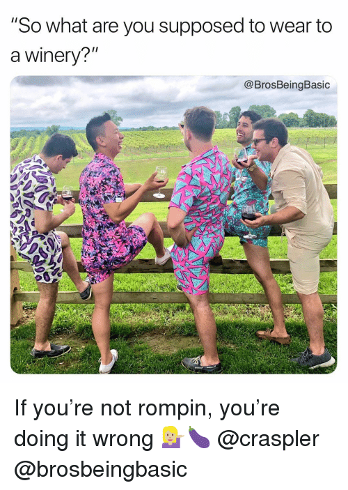 """You, What, and What Are: """"So what are you supposed to wear to  a winery?""""  @BrosBeingBasic If you're not rompin, you're doing it wrong 💁🏼🍆 @craspler @brosbeingbasic"""