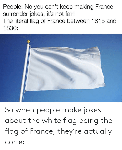 About The: So when people make jokes about the white flag being the flag of France, they're actually correct