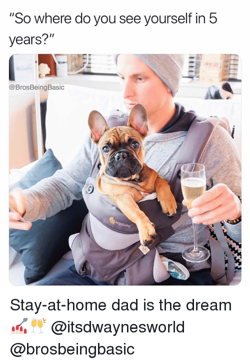 """Dad, Home, and The Dream: """"So where do you see yourself in 5  years?""""  @BrosBeingBasic  ergobaby Stay-at-home dad is the dream 💅🏻🥂 @itsdwaynesworld @brosbeingbasic"""