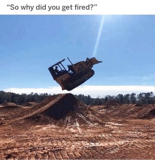 """Why, Did, and You: """"So why did you get fired?"""""""