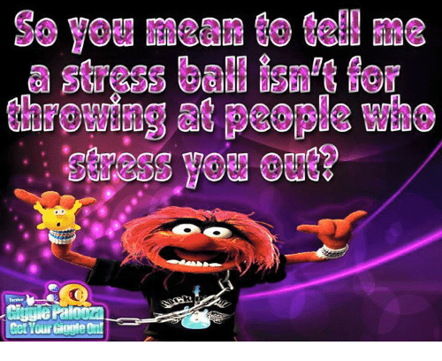 You Mean To Tell Me: So you mean to tell me  Stress baMisn'tfer  thFGgating at People Who  fac-  Cut Your Giggle On