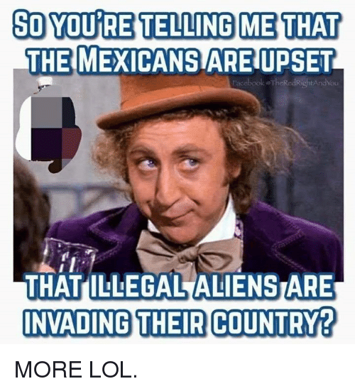 Lol, Memes, and 🤖: SO YOU RE TELLING ME THAT  THE MEXICANS ARE UPSET  acebook oTheRedRightAndYou  THAT ILLEGAL ALIENSTARE  NVADING THEIR COUNTRY? MORE LOL.