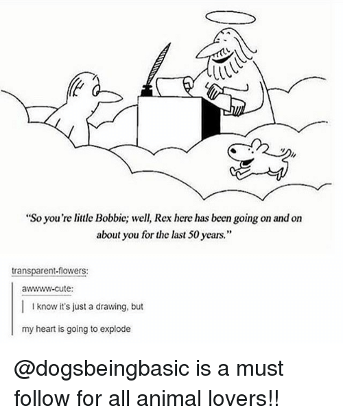 """Cute, Memes, and Animal: """"So you're little Bobbic; well, Rex here has been going on and on  about you for the last 50 years.""""  transparent-flowers:  awwww-cute:  I know it's just a drawing, but  my heart is going to explode @dogsbeingbasic is a must follow for all animal lovers!!"""