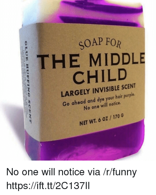 Funny, Hair, and Purple: SOAP FOR  THE MIDDLE  CHILD  LARGELY INVISIBLE SCENT  Go ahead and dye your hair purple.  No one will notice.  NET WT. 6 oZ /170 G No one will notice via /r/funny https://ift.tt/2C137lI