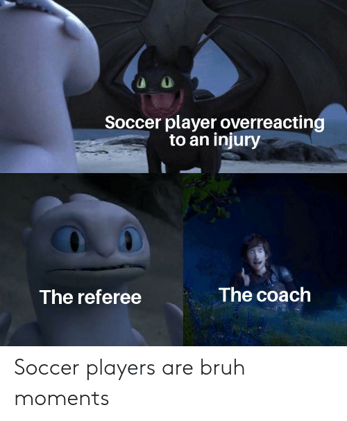 Bruh, Reddit, and Soccer: Soccer player overreacting  to an injury  The coach  The referee Soccer players are bruh moments