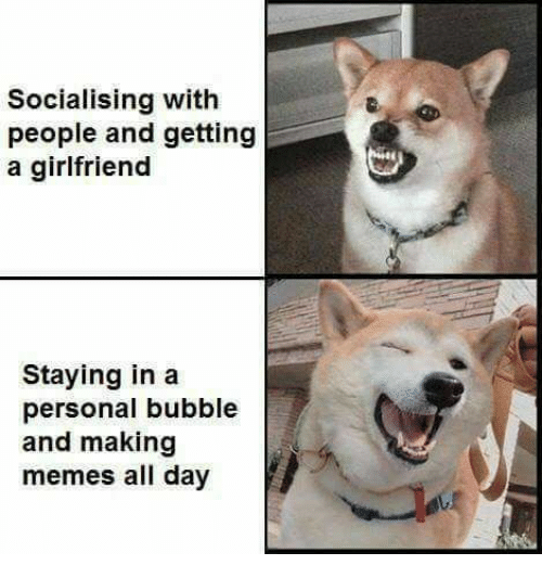 Making Meme: Socialising with  people and getting  a girlfriend  Staying in a  personal bubble  and making  memes all day