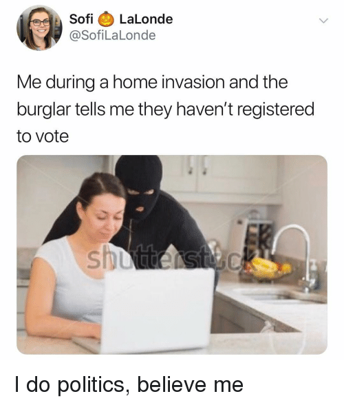 Politics, Home, and Dank Memes: SofiLaLonde  @SofiLaLonde  Me during a home invasion and the  burglar tells me they haven't registered  to vote I do politics, believe me