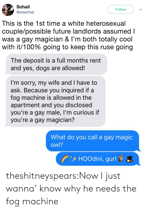ruse: Sohail  @sideofhail  Follow  This is the 1st time a white heterosexual  couple/possible future landlords assumed I  was a gay magician & I'm both totally cool  with it/100% going to keep this ruse going   The deposit is a full months rent  and yes, dogs are allowed!  I'm sorry, my wife and I have to  ask. Because you inquired if a  fog machine is allowed in the  apartment and you disclosed  you're a gay male, I'm curious if  you're a gay magician?  What do you call a gay magic  owl?  HOOdini, gurl theshitneyspears:Now I just wanna' know why he needs the fog machine
