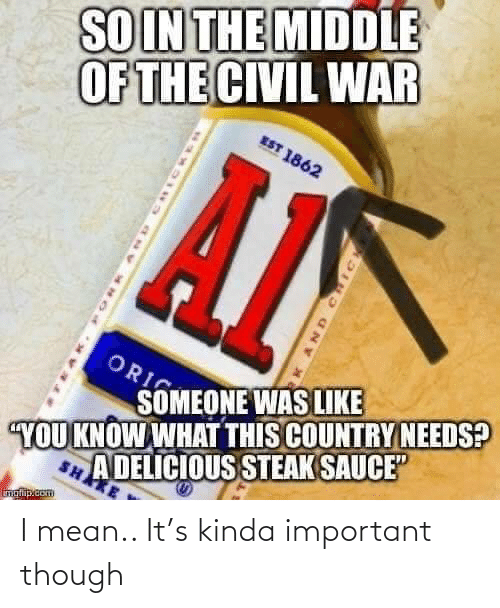 "though: SOIN THE MIDDLE  OF THE CIVIL WAR  EST 1862  ORI  SOMEONE WAS LIKE  A DELICIOUS STEAK SAUCE""  SHAKE  YOU KNOW WHAT THIS COUNTRY NEEDS?  inglip.com  AND CHIC I mean.. It's kinda important though"