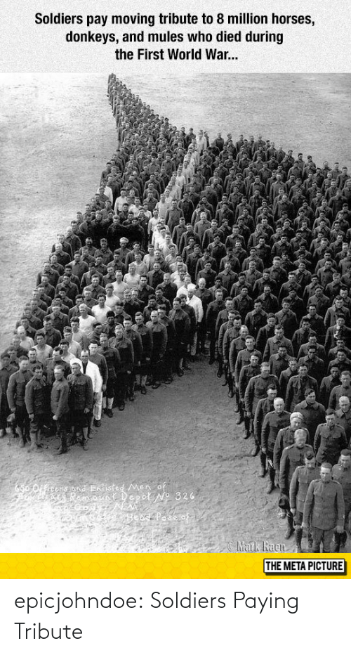 Soldiers: Soldiers pay moving tribute to 8 million horses,  donkeys, and mules who died during  the First World War...  THE META PICTURE epicjohndoe:  Soldiers Paying Tribute