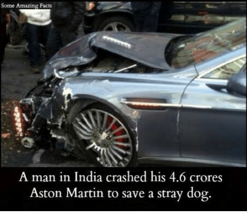 Aston Martin: Some Amazing Facts  A man in India crashed his 4.6 crores  Aston Martin to save a stray dog