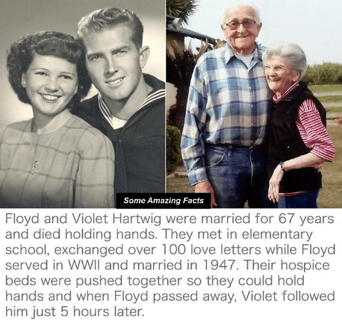 Memes, Elementary, and Mets: Some Amazing Facts  Floyd and Violet Hartwig were married for 67 years  and died holding hands. They met in elementary  school, exchanged over 100 love letters while Floyd  served in WWII and married in 1947. Their hospice  beds were pushed together so they could hold  hands and when Floyd passed away, Violet followed  him just 5 hours later.