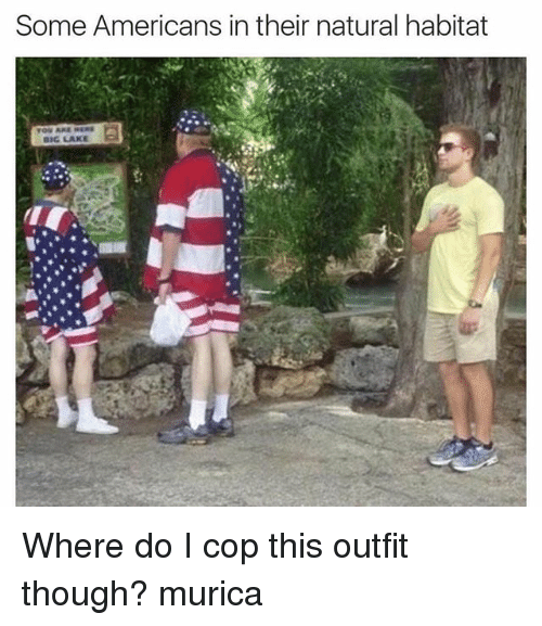 lakings: Some Americans in their natural habitat  BIG LAKE Where do I cop this outfit though? murica
