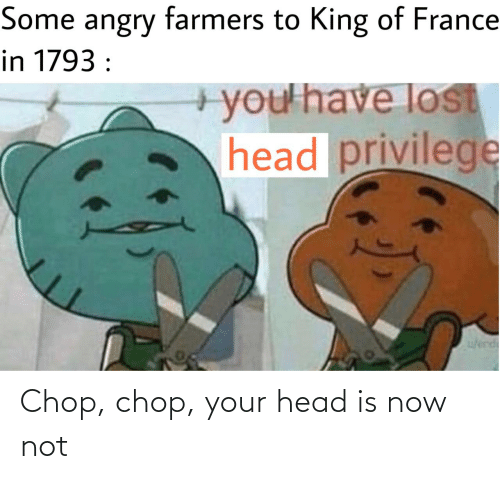 chop: Some angry farmers to King of France  in 1793 :  +you'have lost  head privilege  w/erd Chop, chop, your head is now not