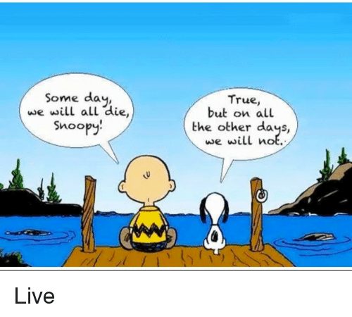 True, Live, and Snoopy: Some day,  we will all die,  Snoopy!  True,  but on all  the other days,  we will not.  Live
