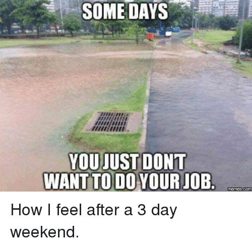 3 Day Weekend: SOME DAYS  YOU JUST DONT  WANT TODO YOUR JOB  memes COM How I feel after a 3 day weekend.