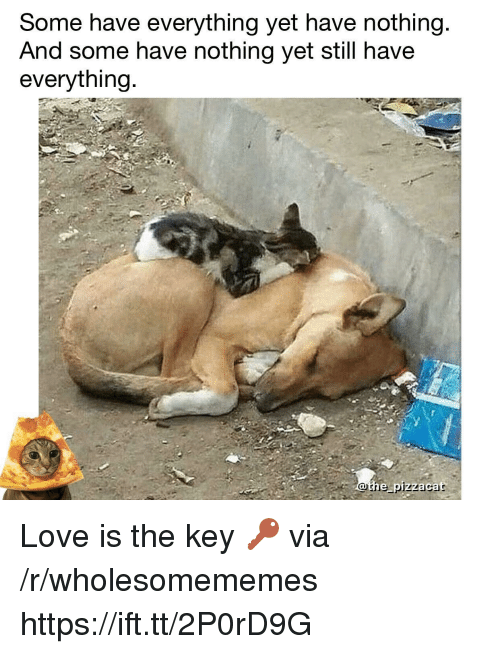 Love, Key, and Via: Some have everything yet have nothing  And some have nothing yet still have  everything  othe pizzacat Love is the key 🔑 via /r/wholesomememes https://ift.tt/2P0rD9G