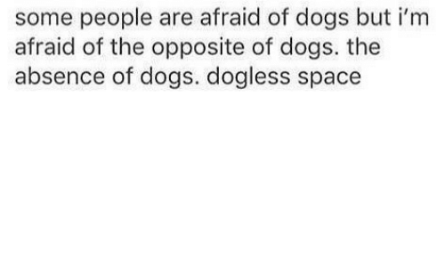 Dogs, Space, and Irm: some people are afraid of dogs but i'rm  afraid of the opposite of dogs. the  absence of dogs. dogless space
