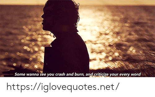 Word, Net, and Crash: Some wanna see you crash and burn, and criticize your every word https://iglovequotes.net/