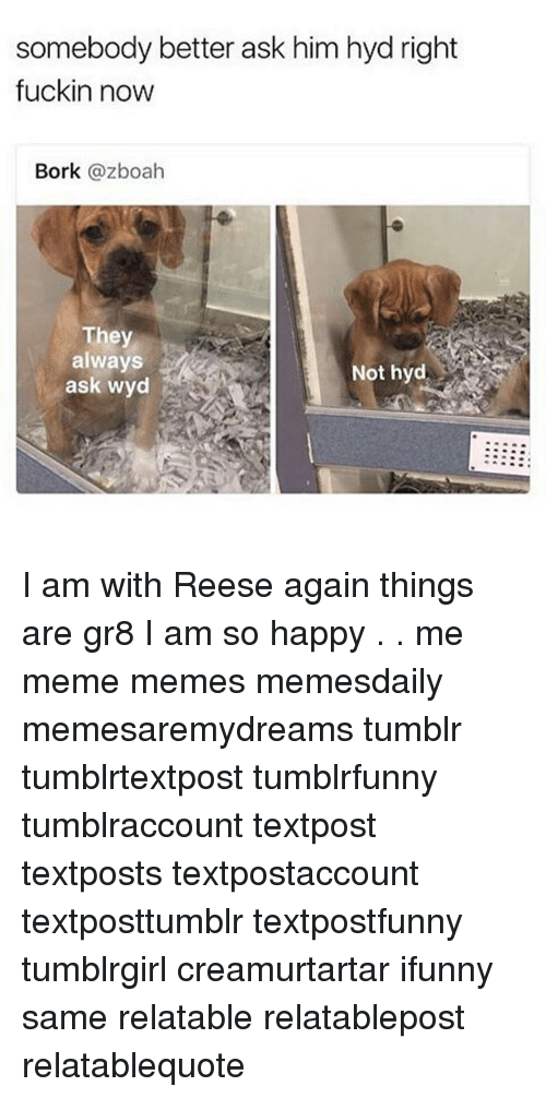 Meme, Memes, and Tumblr: somebody better ask him hyd right  fuckin now  Bork @zboah  They  always  ask wyd  Not hyd I am with Reese again things are gr8 I am so happy . . me meme memes memesdaily memesaremydreams tumblr tumblrtextpost tumblrfunny tumblraccount textpost textposts textpostaccount textposttumblr textpostfunny tumblrgirl creamurtartar ifunny same relatable relatablepost relatablequote