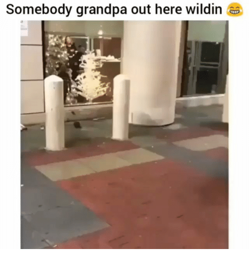 Memes, Grandpa, and Wildin: Somebody grandpa out here wildin