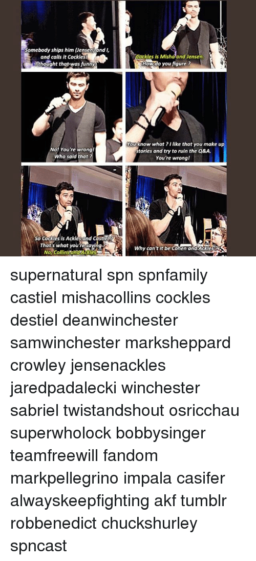 Funny, Memes, and Tumblr: Somebody ships him (Jensen)and  and calls it Cockless  Uthought that-was funny  Cockles is Mishaand Jensen  How do you figure t  No! You're wrong  Who said that ?  Youknow what ?I like that you make up  stories and try to ruin the Q&A.  You're wrong!  So Cockles is Ackles and Castiel  That s what youre savi  No, Collins andTAckies  Fy  Why can  it be cohen and ackie supernatural spn spnfamily castiel mishacollins cockles destiel deanwinchester samwinchester marksheppard crowley jensenackles jaredpadalecki winchester sabriel twistandshout osricchau superwholock bobbysinger teamfreewill fandom markpellegrino impala casifer alwayskeepfighting akf tumblr robbenedict chuckshurley spncast