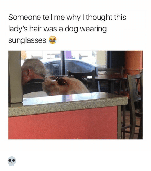 Hair, Sunglasses, and Girl Memes: Someone tell me why l thought this  lady's hair was a dog wearing  sunglasses 💀