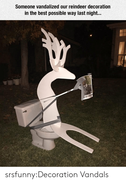 reindeer: Someone vandalized our reindeer decoration  in the best possible way last night... srsfunny:Decoration Vandals