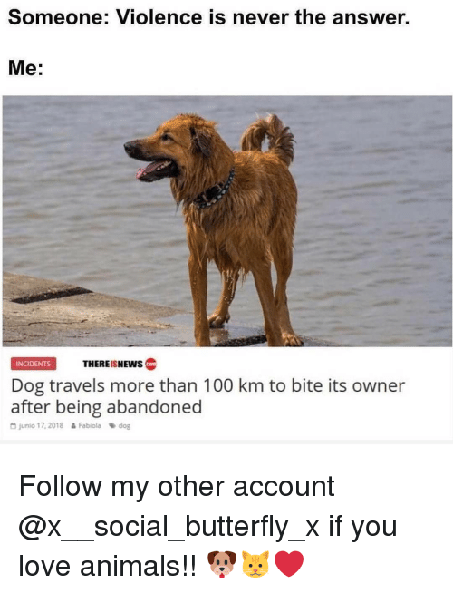 Anaconda, Animals, and Love: Someone: Violence is never the answer.  Me:  INCIDENTS  THERE!SNEWS C  Dog travels more than 100 km to bite its owner  after being abandoned  D junio 17,2018 Fabioladog Follow my other account @x__social_butterfly_x if you love animals!! 🐶🐱❤